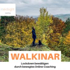 Walkinar Coaching